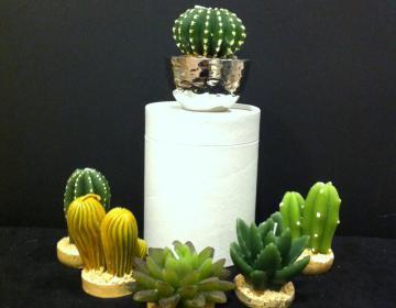 Offerta speciale: porta candele martellato medio con cactus candale