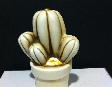 Egan: vaso cactus