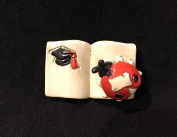 bomboniere laurea libro coccinella